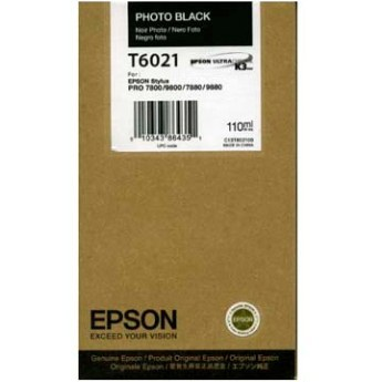 Epson T602100  Cartuccia nero-photo, capacit� 110ml