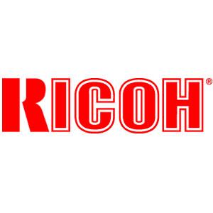 Ricoh b116-3014 developer unit giallo