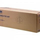 toner e cartucce - C13S051177  tamburo cyano 30.000 pagine