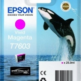 toner e cartucce - C13T76034010 Cartuccia d'inchiostro magenta (vivid) 25.9ml